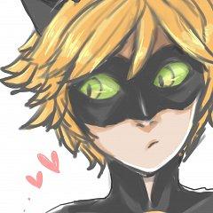 Chat Noir (Ladybug)