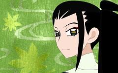Tsuruga Meisai