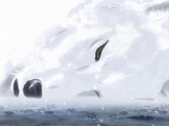 Kiba (Wolf's Rain)