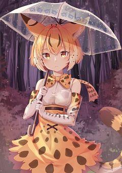 Serval (Kemono Friends)