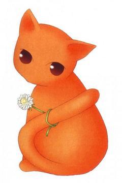 Sohma Kyo (cat)