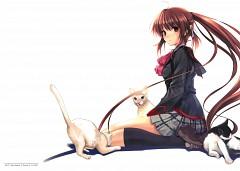 Natsume Rin