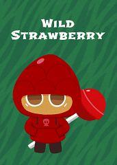 Wild Strawberry Cookie