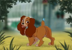 Lady (Lady and the Tramp)