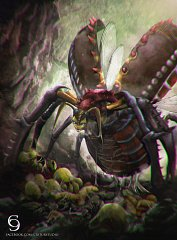Queen Insect
