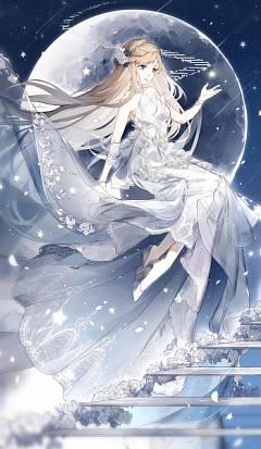 Dream Wedding (Miracle Nikki)