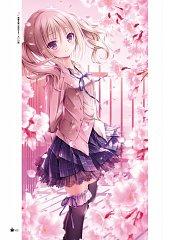 Toriumi Sakura