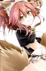 Berserker (Tamamo Cat)