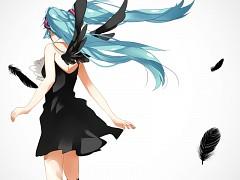 The Black Wings