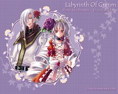 Labyrinth Of Grimm