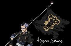 Magna Swing
