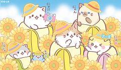 Bananya: Fushigi na Nakamatachi