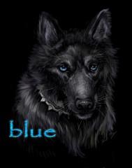 Blue (Wolf's Rain)