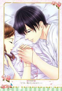 Kagami No Naka No Princess -Love Palace-