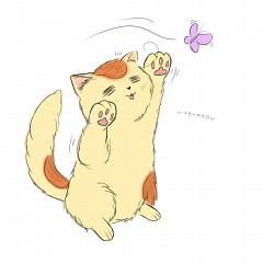 Italycat