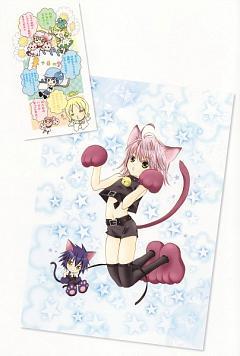 Shugo Chara! Illustrations