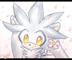 Silver the Hedgehog