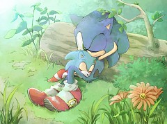 Sonic the Hedgehog (Character)