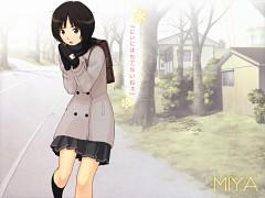 Tachibana Miya