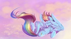 Dash Rainnbow