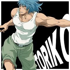 Toriko (Character)