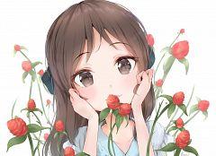 Tachibana Alice