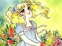 Candice White Adley