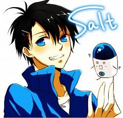 Salt (Nico Nico Jikkyou)