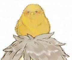 Gilbird