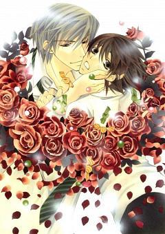 Junjou Romantica