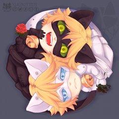 Chat Blanc (Chat Noir)