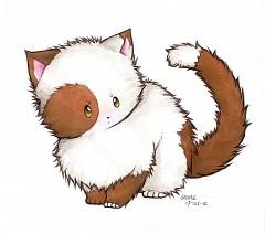 Iggycat