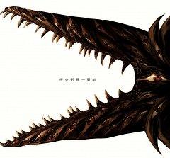 Crocodile Shadow