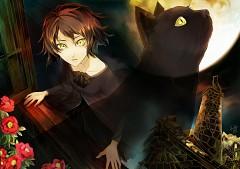 Black Cat (Song)