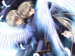Angel's Feather