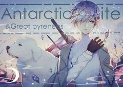 Antarcticite