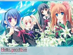 Hello Good-bye