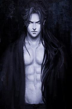 Hijikata Toshizo (Peace Maker Kurogane)