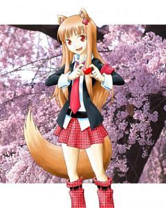 Hinamori Amu (Cosplay)