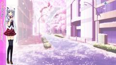 Kasugai Sakura