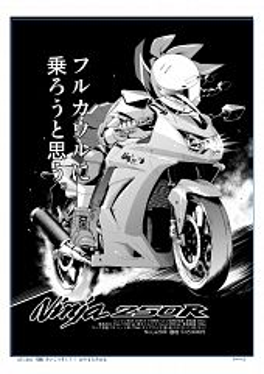 Kawasaki Raimu