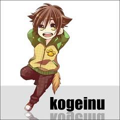 Kogeinu