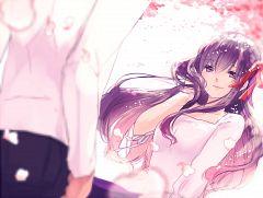 Matou Sakura