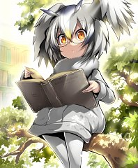 Northern White-faced Owl (Kemono Friends)