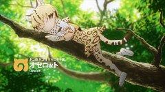 Ocelot (Kemono Friends)