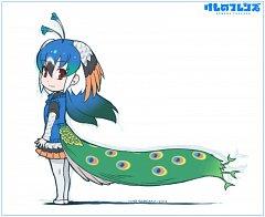 Peafowl (Kemono Friends)