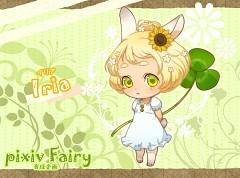 Pixiv Fairy