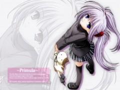 Primula (Shuffle!)