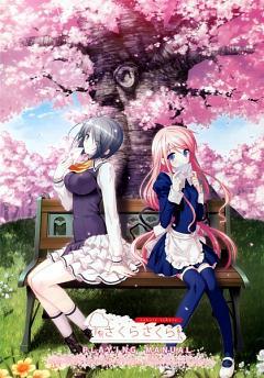 Sakura Sakura