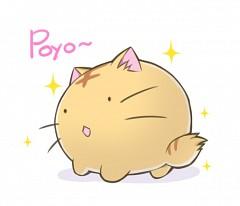 Satou Poyo